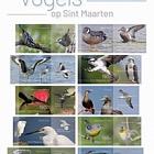 St Marteen - Birds