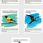 Birds (Saba)