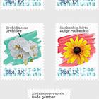 Flowers (Saba)