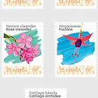 Flowers  (St. Eustatius)