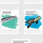 Sea Life (St. Eustatius)
