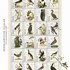 Birds 2021 (Saba)