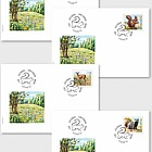 Animals of the Forest - (FDC Single Stamp)