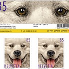 Animal Friends - Dog Sheetlet 10 Stamps Mint