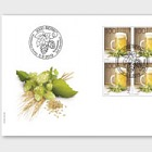 The Art of Brewing Beer - FDC Block of 4