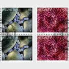 Microscopic Art - Block of 4 CTO