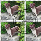 Animals In The City - Stoat Sheetlet x 10 Stamps - CTO
