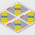 125 Anni del Touring Club Svizzero (TCS)