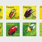 Beetles 2013