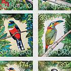 2020年南美鸟类