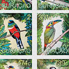 Uccelli Sudamericani 2020
