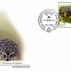 Estonian Fauna- Hedgehog