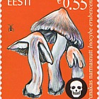 Estonian Mushrooms - The Deadly Fibrecap