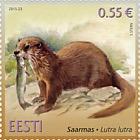 Fauna de Estonia - nutria (Lutra lutra)