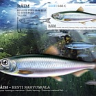 Estonian National Fish- Baltic Herring