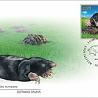 Estonian Fauna – The Mole