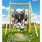 伟大的爱沙尼亚事物——乡村秋千