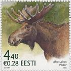 Estonian Fauna - The Elk
