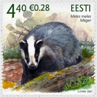Estonian Fauna - The Badger