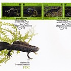 WWF - Great Crested Newt