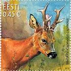 Fauna De Estonia - El Corzo