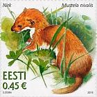 Estonian Fauna - Weasel