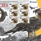Europa 2019 - Aves - Quebrantahuesos