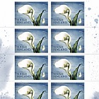 Calla Domestic Stamp
