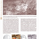 Lascaux, Dordogne (Philatelic Document)