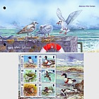 Alderney Bailiwick Birds