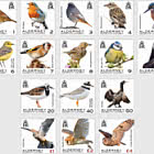Definitives - Alderney Birds