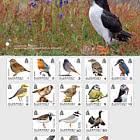 Definitives - Alderney Birds