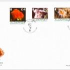 Définitives - Corail et Anémone de mer II
