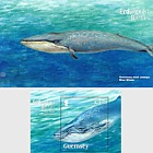 Endangered Species - Blue Whale