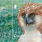 Endangered Species: Philippine Eagle