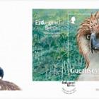 Endangered Species: Philippine Eagle
