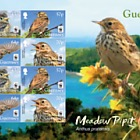 WWF:  (Endangered Species Meadow Pipit (Sheet of 8)