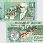 1991 £1 D.M. Clark signature