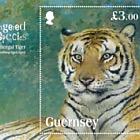 Endangered Species Bengal Tiger