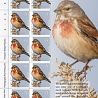 Europa 2019 - National Birds - Sheets of 10 65p Europa Value