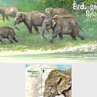Endangered Species - Asian Elephant