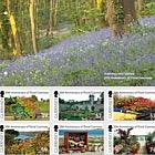 Floral Guernsey- (PP Set)