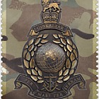 Royal Marines 350th Ann