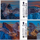 WWF Fledermäuse von Gibraltar