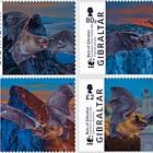 WWF Bats of Gibraltar