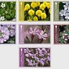 Gibraltar Endemic Flowers - CTO