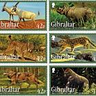 Animali In Via d'estinzione II