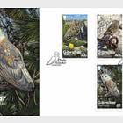 Gibraltar Owls - FDC Set