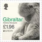 Europa 2021 - «Macaques de Barbarie II»