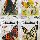 Butterflies in Gibraltar